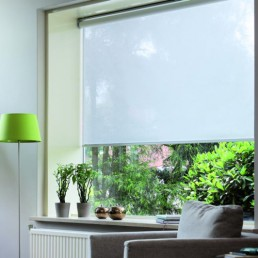 Roller Shades Barrie